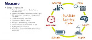 Fosway PLASMA Learning Cycle_MEASURE Explained
